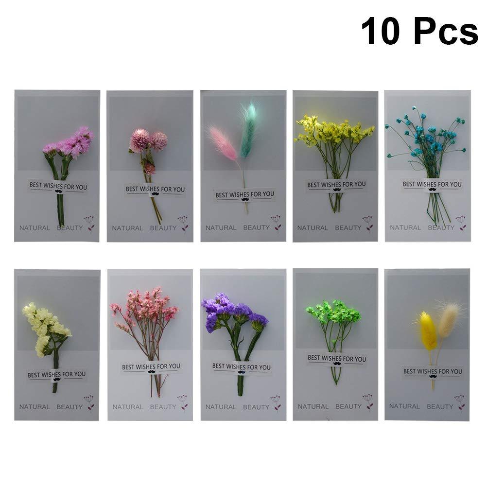 BESTOYARD La cartolina d'auguri 10pcs ha asciugato i fiori per natale di giorno di S. Valentino di compleanno di ringraziamento di nozze