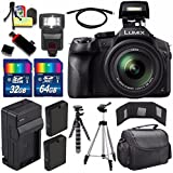Panasonic Lumix DMC-FZ300 Digital Camera + Extra Battery + Charger + 96GB