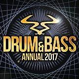 RAM Annual 2017