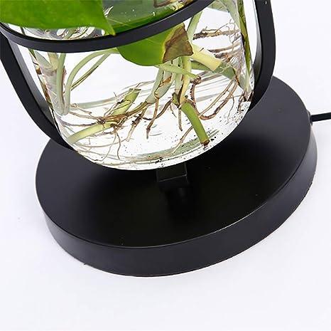 SHINEELI Lampada da Terra A Mensola, Lampada da Terra per