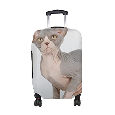 70%OFF Animal Cat Sphynx Mix Animated Real Pet Thoroughbred Fairskin Pattern Print Travel Luggage Protector Baggage Suitcase Cover Fits 18-21 Inch Luggage