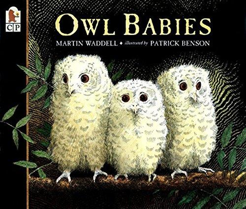 Owl Babies (Owl Babies Board Book)