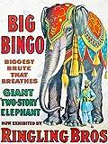 CIRCUS ELEPHANT BIG BINGO RINGLING BROS BRUTE GIANT USA ART PRINT POSTER BB7703