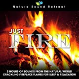 Just Fire: 2 Hours of Sounds from the Natural World (Crackling Fireplace Flames for Sleep & Relaxation)