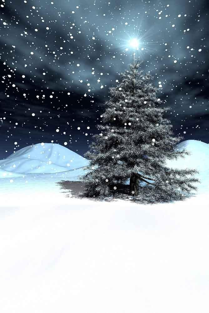 GladsBuy Charming Night 8' x 12' Digital Printed Photography Backdrop Christmas Theme Background YHA-070