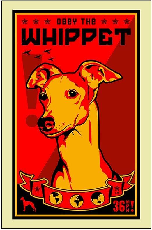 ITALIAN GREYHOUND PAW LOVE HEART PET DOG METAL LICENSE PLATE FRAME TAG HOLDER