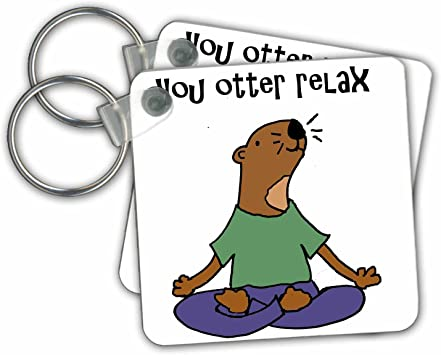 Amazon Com 3drose Key Chains Funny Cute Sea Otter Yoga Cartoon You Otter Relax Pun Set Of 4 2 25 X 2 25 Kc 260871 2 Office Products