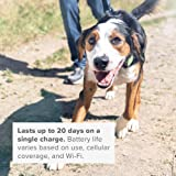 Whistle 100-04203-00 Go Explore/The Ultimate Health + GPS Location Tracker for Pets/Magenta