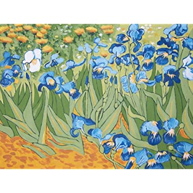 Van Gogh IRISES Paint by Number Kit 11  x 14