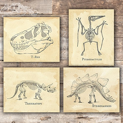 Dinosaur Bedroom Wall Decor Art Prints (Set of 4) - Unframed - 8x10s -