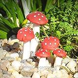 fairy pics - Fairy Garden Mini Fly Agaric Mushroom Pics, 5 Piece Set - My Mini Garden Dollhouse Accessories for Outdoor or House Decor
