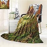 YOYI-HOME Luxury Warm Fuzzy Weighted Bed Duplex Printed Blanket National Parks Utah Plateau Mojave Desert Southwest Erosion Navajo Artprint Brown Green Camping Blanket /W79 x H47