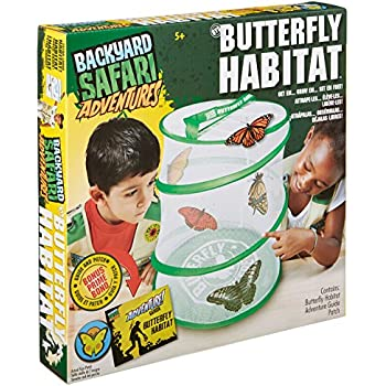Amazoncom Backyard Safari Butterfly Habitat Toys Games - Backyard safari outfitters butterfly habitat review