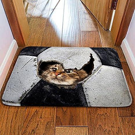 Fussmatte 3d Teppich Pet Matte Fussmatte Schlafzimmer Kuche Wc Badezimmer Sauggreifer Matte 1 50 80 Cm 40 60 Cm 40 60 Cm C 0081 E Amazon De Kuche Haushalt