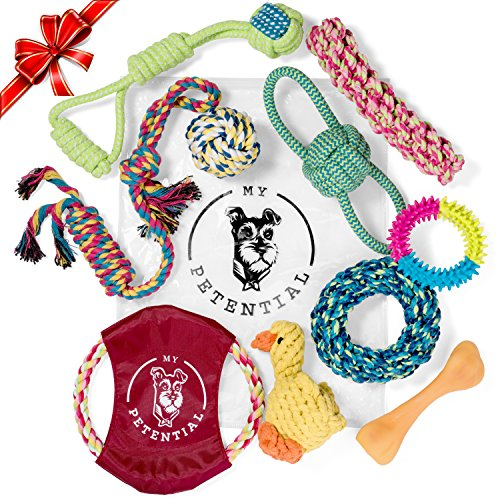 My Petential Dog Toy Gift Set (10 Pack) - Fun Rope, Rubber and Squeaky Pet Toy - Interactive Chew Toys for Happy Dogs - Good for Teething, Tug of War and Keeps them Busy (Dog Toy Gift Baskets)