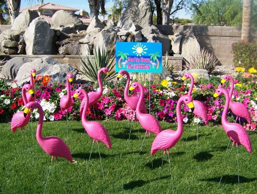 """10 Premium Pink Yard Flamingos and""""You've been flocked yard"""" sign"""