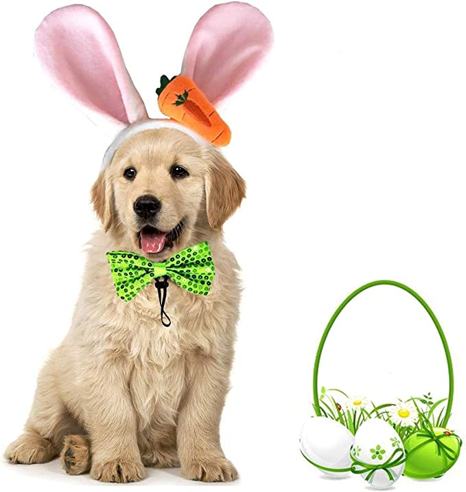 Easter dog bandana slip over the collar assorted colorful eggs and white rabbit