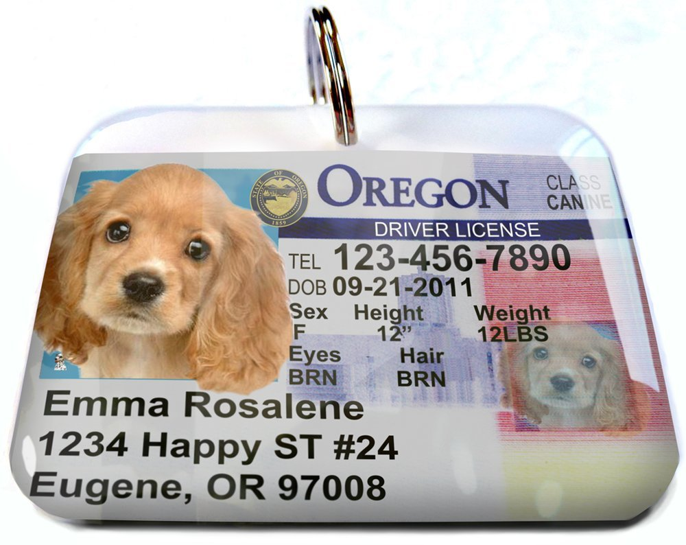 ID4Pet Oregon State Drivers License Personalized for Dog's and Cats (Large 2.00'' x 1.50'') by ID4Pet