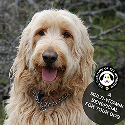 Vitamins for Dogs - Dog Glucosamine - Chewable Nutritional Supplement for Dogs - Dog Multivitamins - Made in the USA from The Institute of Pet Nutrition