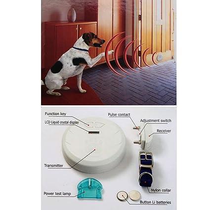 Amazon.com : Dog Fences Indoor Digital Electronic Invisible Fence ...