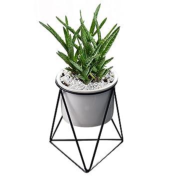 Pot De Fleurs Pour Lintérieur Ymtm 116 Cm Moderne Pot