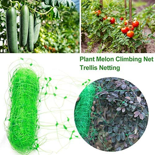 Wangyan 123 2 6M Guisante Tomate Melón Rejilla de Cultivo ...