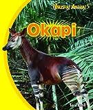 Okapi (Unusual Animals)