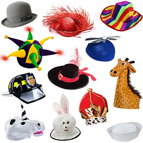 Funny Party Hats Assorted Costume