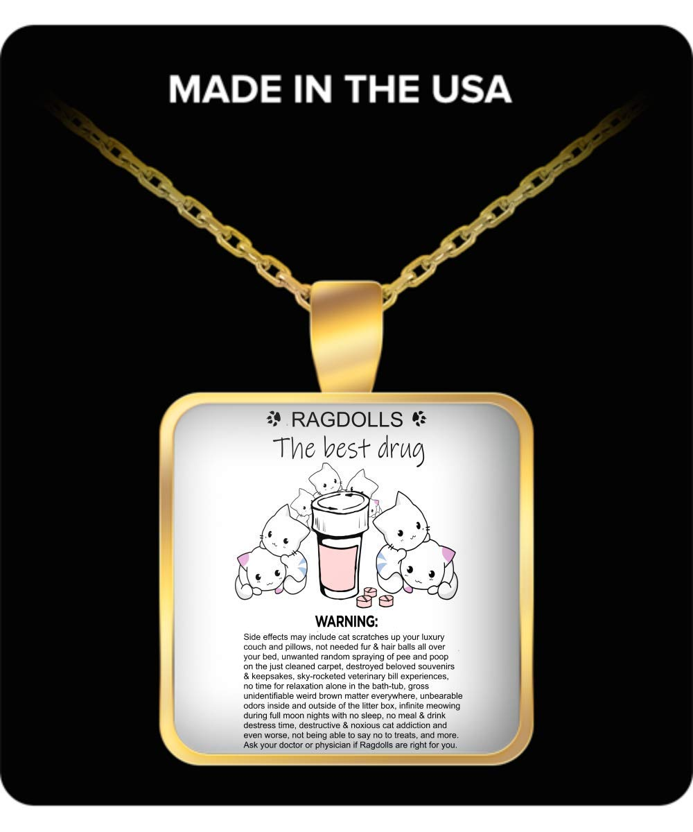 InfinitInspiration Ragdoll Cats The Best Drug - Square Gold Cat Necklace - Cute Cat Necklace for Women Who Love Ragdolls - Cat Mom Necklace with Chain That Fits Everyone