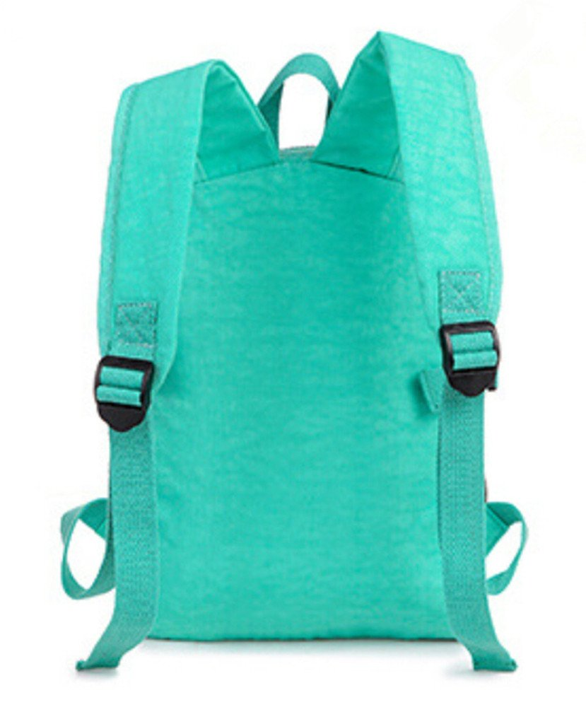 bea6d68c672c Tiny Chou(TM) Sport Waterproof Nylon Backpack Casual Lightweight Strong  Daypack  Amazon.ca  Sports   Outdoors