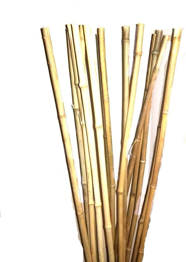Empire Home Natural Thick Bamboo Stakes 5 Feet Tall About Half Inch Diameter - Pack of 8 (Natural Yellow)