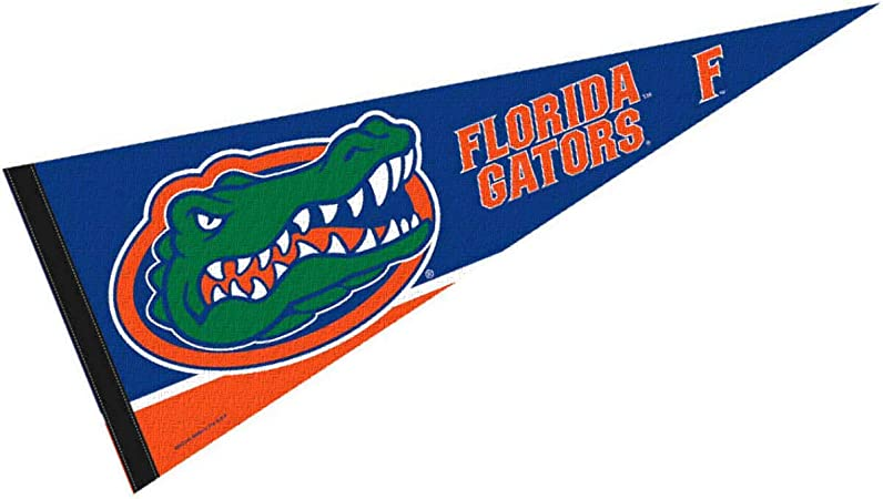 New College of Florida Pennant