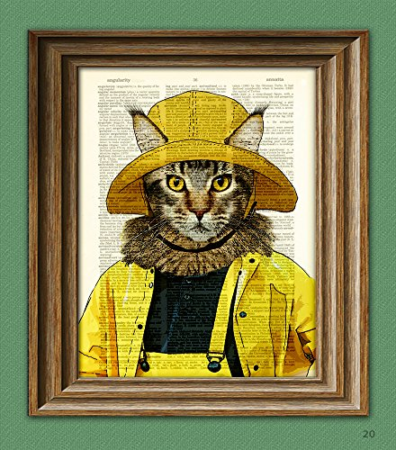 Art Cat Coon Maine - Maine Coon cat hunts for lobstah in the yellow raincoat illustration beautifully upcycled dictionary page book art print