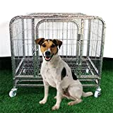 Paw Essentials MWG-C306 24in Heavy Duty Dog Cage / Pet Cage Crate Kennel w/ One Door and One Window – Silver, 23.62 x 17.72 x 22.05in Review