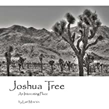 Joshua Tree An Interesting Place