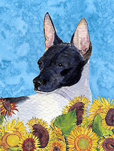 Caroline's Treasures SS4113GF Rat Terrier Flag, Small, Multicolor For Sale