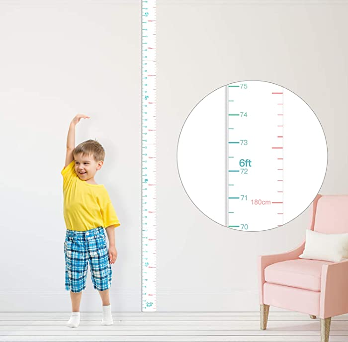 Top 10 Doctor Office Height Chart