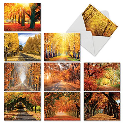 (10 Blank 'Fall Foliage' Note Cards with Envelopes 4 x 5.12 inch, Boxed Set of Autumn Landscape Stationery - All-Occasion Greeting Cards for Weddings, Holidays and Thank Yous)