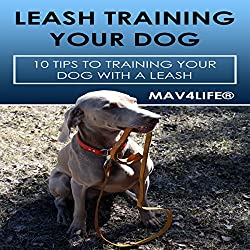 Leash Training Your Dog