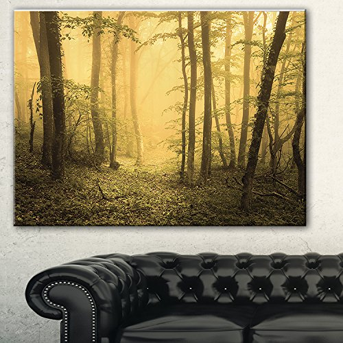 Designart Trail Through Yellow Foggy Forest Landscape