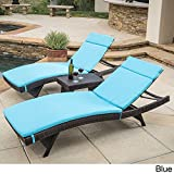 Christopher Knight Home Luana Outdoor 3-piece Wicker Adjustable Chaise Lounge Set with Cushions Blue