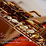 SAX-SOPRANO PLATINUM Collection - Large Sound Library WAVE Multi-Layer Samples 2,67GB on DVD or download