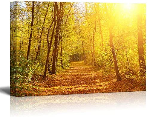 Beautiful Alley View with Yellow Leaves in Autumn Fall Home Deoration
