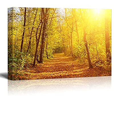 Canvas Prints Wall Art - Beautiful Alley View with Yellow Leaves in Autumn/Fall | Modern Home Deoration- 12