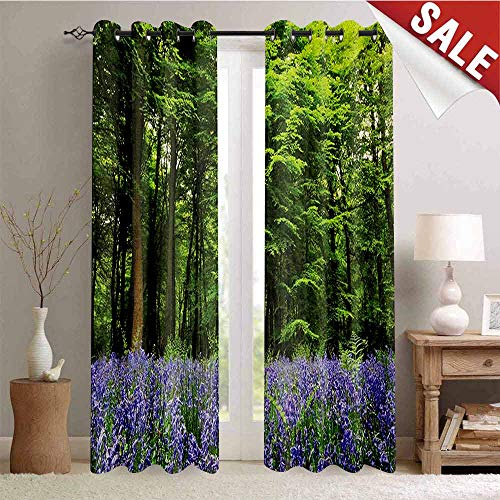 (Woodland, Decorative Curtains for Living Room, Sea of Bluebells Flowers in Forest Springtime April Countryside Seasonal Picture, Waterproof Window Curtain, W84 x L108 Inch Purple Green)
