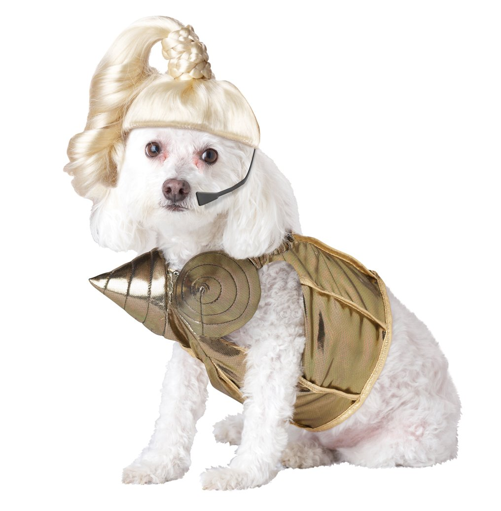 Pup-A-Razzi Pop Queen Dog Costume, Medium, Gold