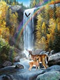 Rainbow Setting a 500-Piece Jigsaw Puzzle by Sunsout Inc.