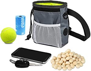 HANWELL Dog Treat Pouch with Built-in Poop Bags Dispenser, Puppy Pet Training Walking Pouch with Adjustable Waist Belt & Shoulder Strap, Hands Free Carries Bag for Running (Grey)
