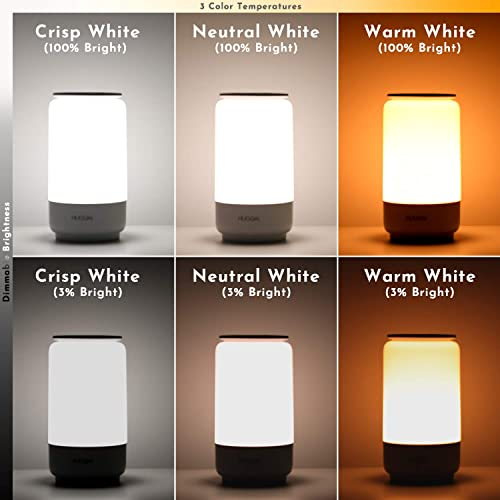 LED Table Lamp, HUGOAI Bedside Lamp, Nightstand Lamps for Bedrooms with Dimmable Whites, Vibrant RGB Colors and Memory Function, No Flicker – Grey