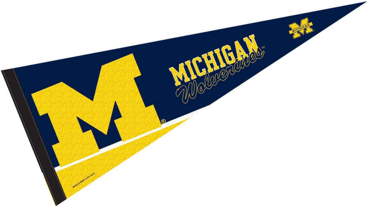 College Flags & Banners Co. Michigan Wolverines Pennant Full Size Felt